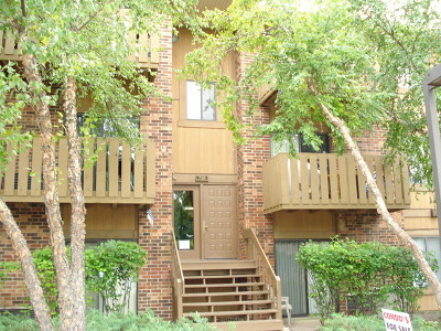 Roselle Condo/Townhouse For Sale: 716 Prescott Drive #105