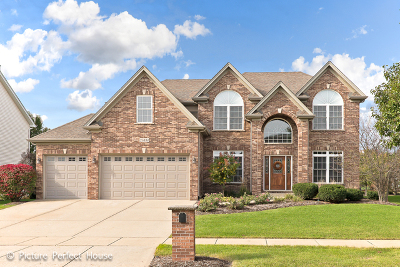 Plainfield Single Family Home For Sale: 25834 Meadowland Circle