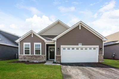 Pingree Grove Single Family Home For Sale: 1023 Carolina Court