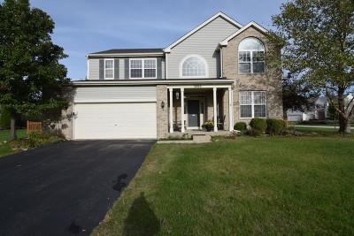 Carpentersville Single Family Home For Sale: 3806 Parsons Road