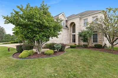 Oakbrook Terrace Single Family Home For Sale: 1115 West 16th Street
