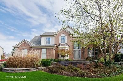 Algonquin Single Family Home For Sale: 571 Brookside Avenue