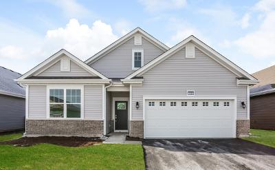 Pingree Grove Single Family Home For Sale: 1029 Carolina Court