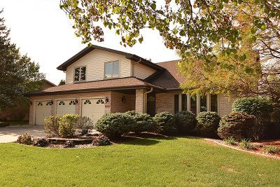 Homer Glen Single Family Home Contingent: 13920 South Trails End Drive