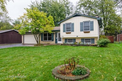Lake Zurich Single Family Home Contingent: 971 Heartwood Lane