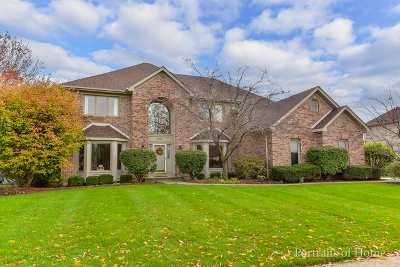 Naperville Single Family Home For Sale: 4416 Clearwater Lane