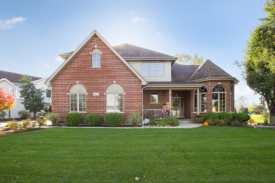 Lockport Single Family Home For Sale: 16427 Shawnee Drive