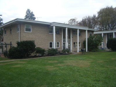 Du Page County Multi Family Home New: 316 North Princeton Avenue