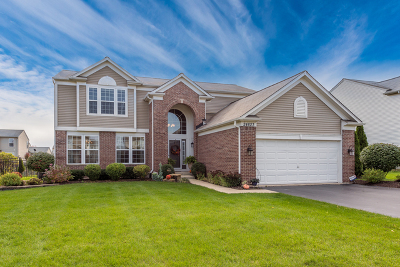 Plainfield Single Family Home For Sale: 24823 Newberry Way