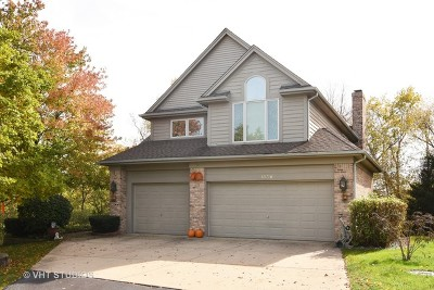 Palatine Single Family Home For Sale: 1136 South Hiddenbrook Trail