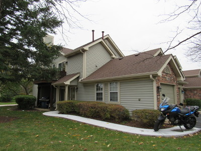 Carol Stream Condo/Townhouse Contingent: 1065 Rockport Drive