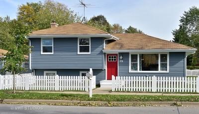Elmhurst Single Family Home For Sale: 207 North West Avenue