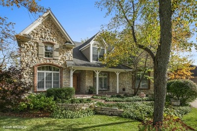 South Elgin Single Family Home For Sale: 841 Reserve Court