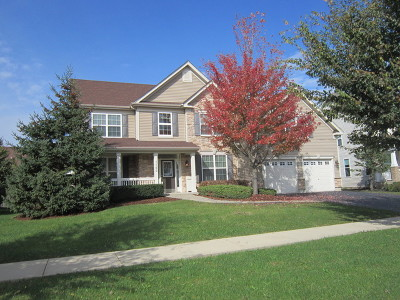 Bolingbrook Single Family Home For Sale: 1162 Winding Way