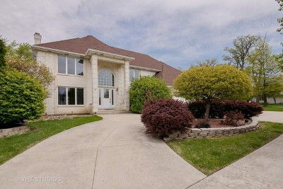 Orland Park Single Family Home For Sale: 8000 Revell Court