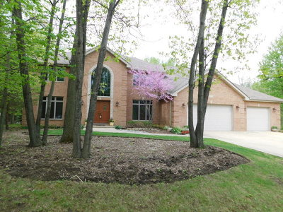 Mokena Single Family Home For Sale: 11534 Swinford Lane