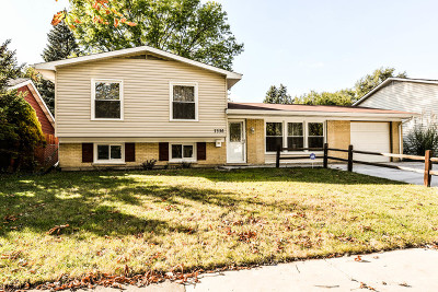 Hanover Park Single Family Home For Sale: 7336 Princeton Circle Drive