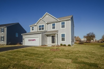 Joliet Single Family Home For Sale: 1125 Woodiris Lot#116 Drive
