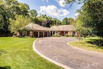 Lake Forest Single Family Home For Sale: 196 North Ahwahnee Road