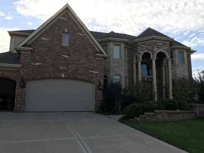 Naperville Single Family Home For Sale: 3523 Frankstowne Court