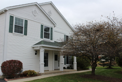 South Elgin Condo/Townhouse For Sale: 729 Fieldcrest Drive #B