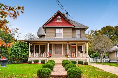 Elgin Single Family Home For Sale: 258 Hamilton Avenue