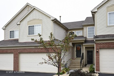 South Elgin Condo/Townhouse Contingent: 253 Nicole Drive #B