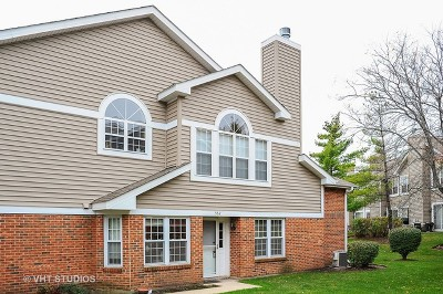 Arlington Heights Condo/Townhouse Re-Activated: 552 West Happfield Drive #1515A
