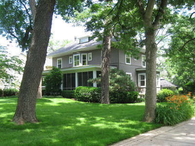 Hinsdale Single Family Home For Sale: 123 North Washington Street