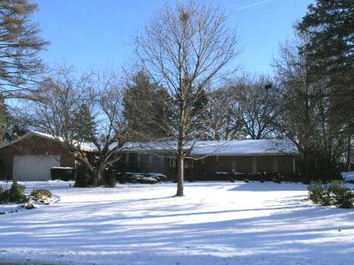 Palatine Single Family Home For Sale: 357 South Elmwood Lane