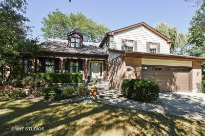 Palatine Single Family Home For Sale: 750 South Harvard Court
