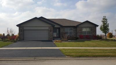 New Lenox Single Family Home For Sale: 2898 Joela Drive