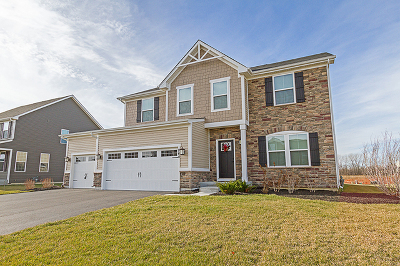 Gilberts Single Family Home For Sale: 864 Blue Aster Parkway