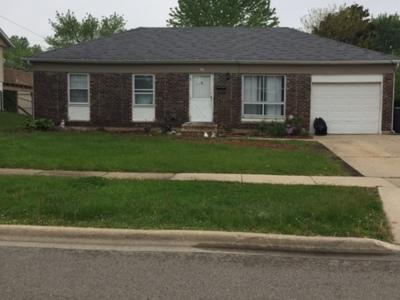 Streamwood Single Family Home For Sale: 1604 McKool Avenue