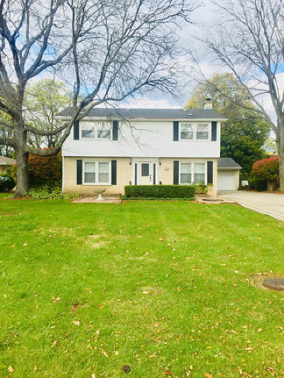 Western Springs Single Family Home For Sale: 1134 Birch Lane