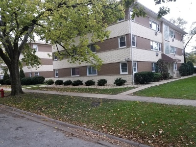 La Grange Park Condo/Townhouse For Sale: 320 Beach Avenue #1A