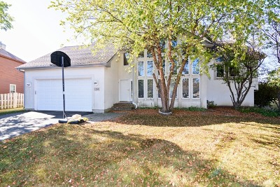 Palatine Single Family Home For Sale: 1240 North Jack Pine Court