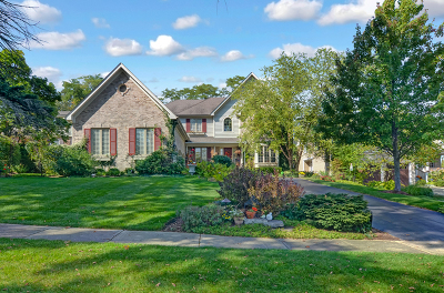 Clarendon Hills Single Family Home New: 216 Middaugh Road