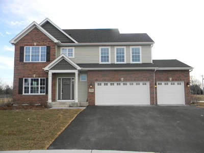 Joliet Single Family Home For Sale: 7200 Yorkshire Street