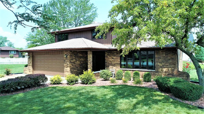 Orland Park Single Family Home For Sale: 13529 Mission Hills Court