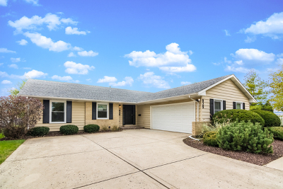 Schaumburg Single Family Home Contingent: 929 Canterbury Drive