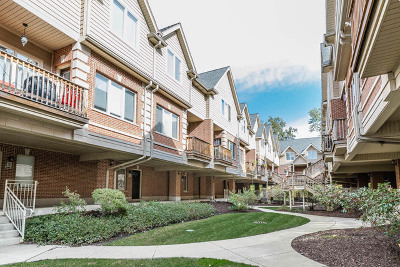 Brookfield Condo/Townhouse For Sale: 3631 Forest Avenue #Q