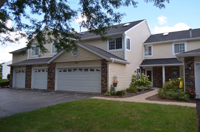 Streamwood Condo/Townhouse Contingent: 254 Brittany Drive