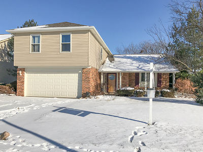 Carol Stream Single Family Home For Sale: 1235 Spring Valley Drive