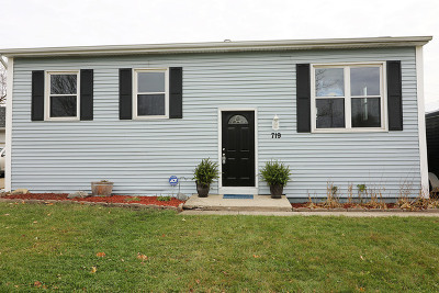 Romeoville Single Family Home Re-activated: 719 Belmont Drive