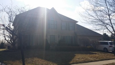 Naperville Single Family Home For Sale: 2004 Yellowstar Court