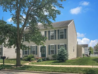 Oswego Single Family Home For Sale: 212 Presidential Boulevard
