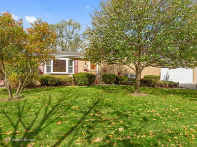 Downers Grove Single Family Home Contingent: 212 55th Place