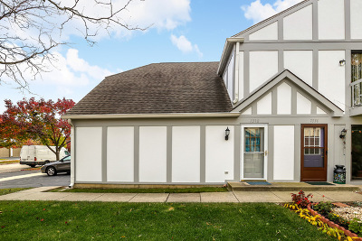 Downers Grove Condo/Townhouse Contingent: 7338 Baybury Road #75