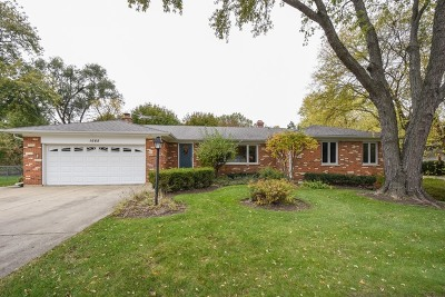 Palatine Single Family Home Contingent: 1668 North Denise Avenue